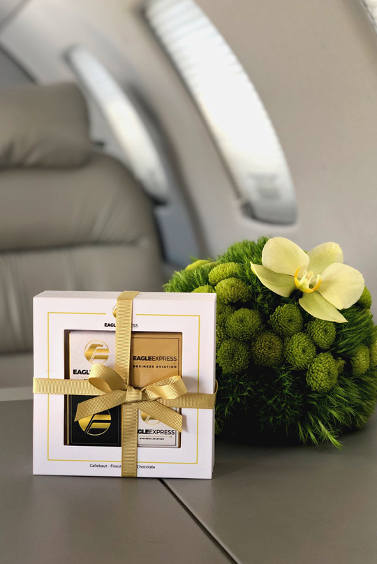 luxurious private jet flight - vol luxueux en jet privé